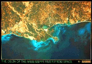 Mississippi Delta Satellite Map