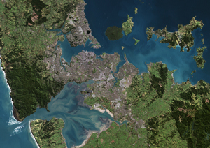 auckland new zealand map
