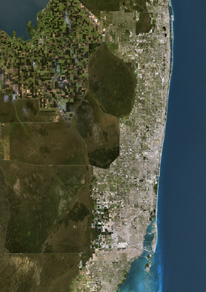 Miami, Florida Satellite Digital Map