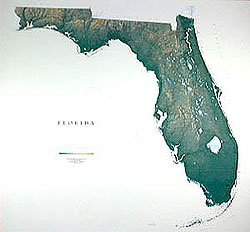 Florida Wall Map